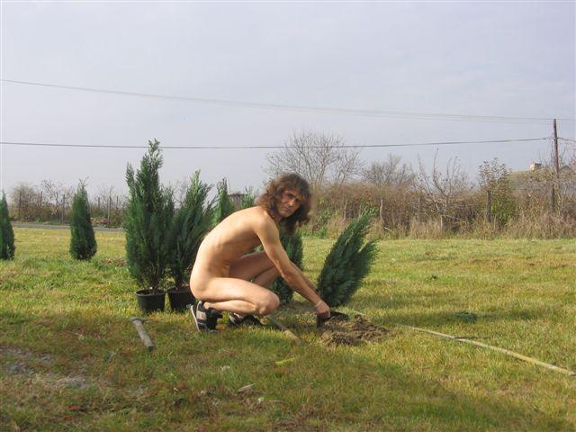 seo Gartenarbeit