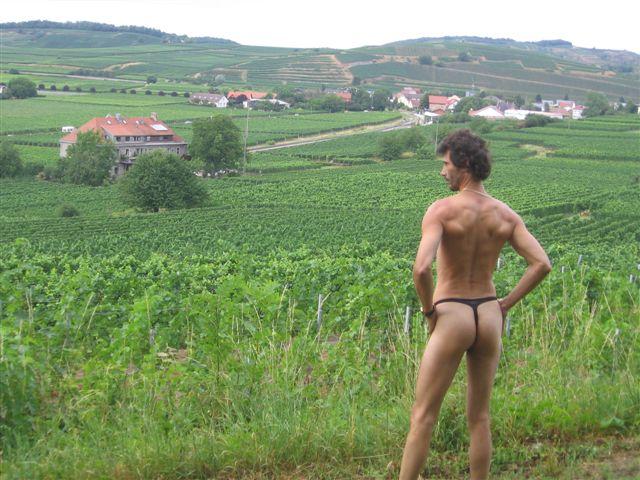 bikini Index Weinberge