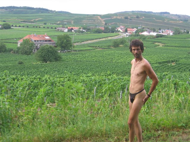 underwear Weinberge